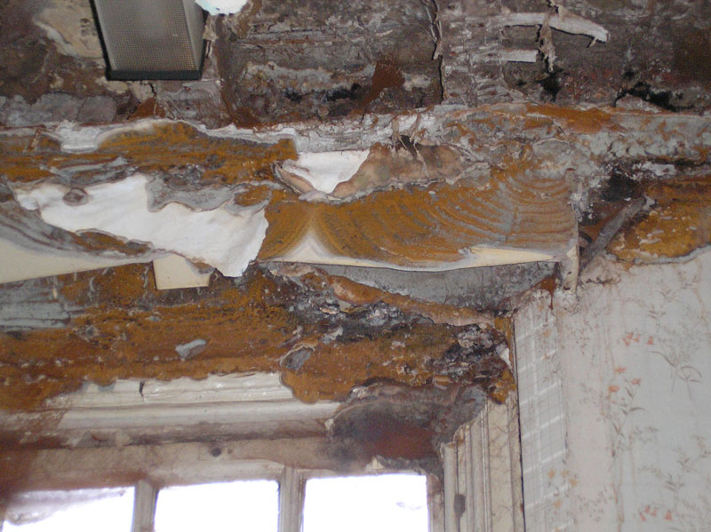 Building Defects Dsp Chartered Surveyors